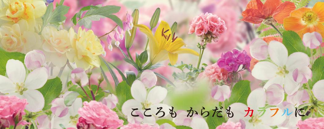 main_1808_pc